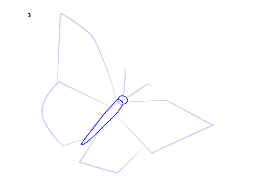 04. Как нарисовать бабочку поэтапно