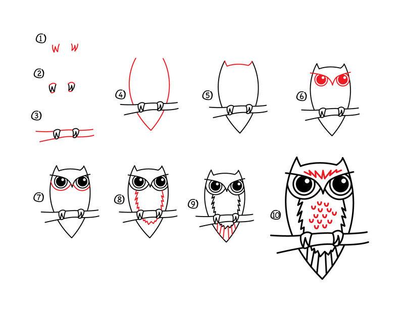 Как нарисовать лицо человека для начинающих карандашом поэтапно