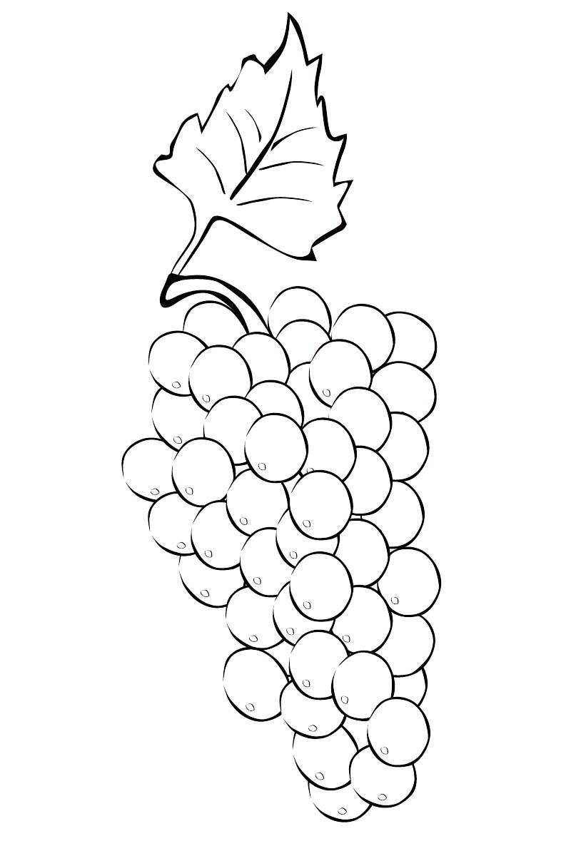 Рисуем акварелью пошагово для начинающих видео