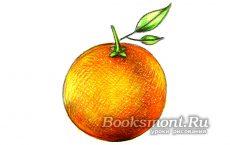 рисунок апельсина карандашом