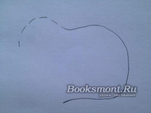 рисуем линию туловища и часть головы