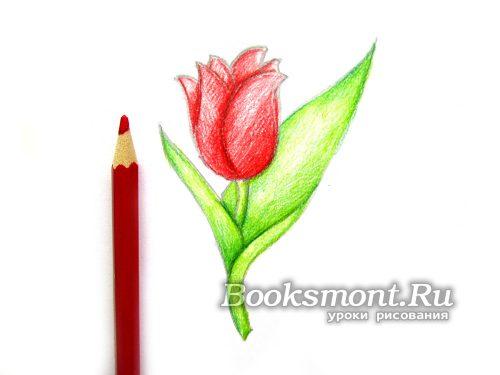 красным карандашом рисуем базовый цвет бутона