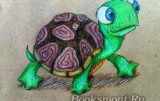 рисунок черепахи карандашом
