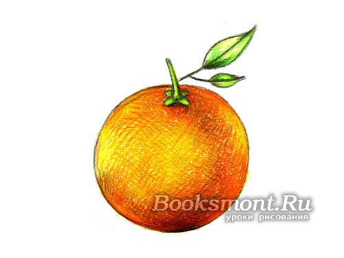 Миниатюра к статье Как поэтапно нарисовать апельсин карандашом
