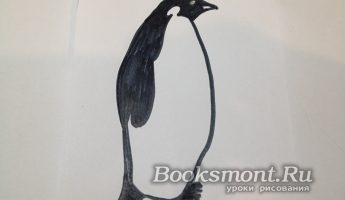 Миниатюра к статье Рисуем пингвина поэтапно простым карандашом