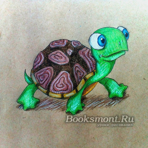 Миниатюра к статье Рисуем черепаху поэтапно карандашом