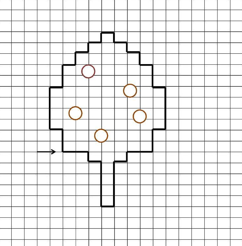 05. Графический диктант по клеточкам для дошкольников