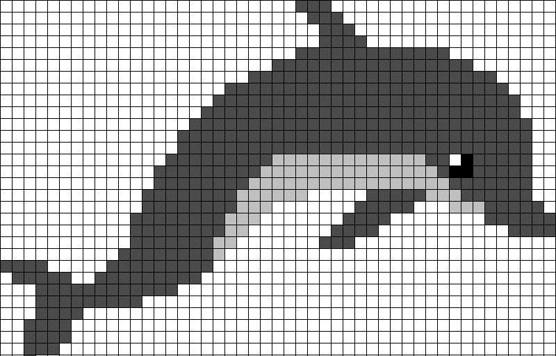 дипломы для картинки по клеткам дельфин машина кого-то сбила