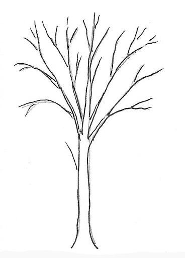 02. Как нарисовать дерево – простой вариант для начинающих