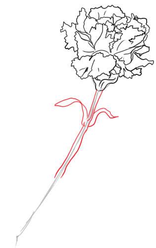 07. Как нарисовать гвоздику поэтапно