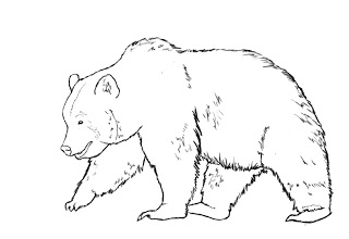 01. Как нарисовать медведя поэтапно