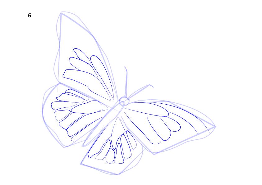 07. Как нарисовать бабочку поэтапно
