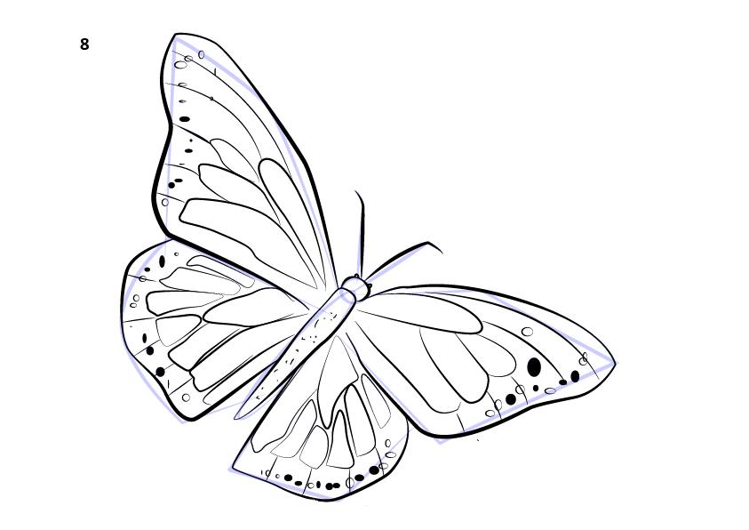 09. Как нарисовать бабочку поэтапно