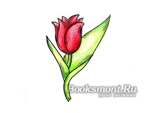 рисунок цветка карандашом