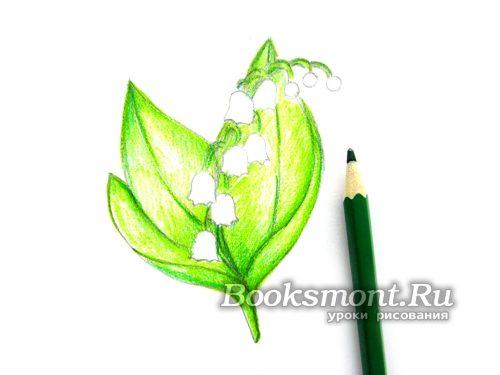 темно-зеленым карандашом придаем тень