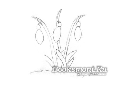 К основанию каждого цветка прорисовываем центральный лепесток