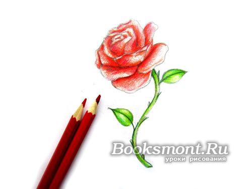 бордовым карандашом добавляем насыщенности