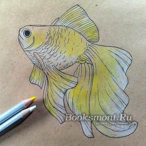 используем желтый и белый карандаш