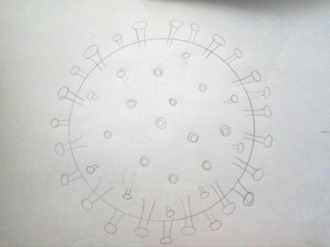 Как нарисовать коронавирус поэтапно