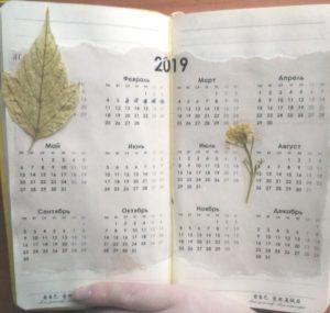 Миниатюра к статье Как начать вести личный дневник ?