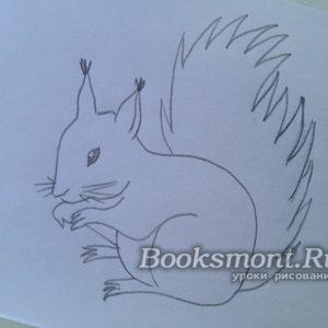 Миниатюра к статье Как нарисовать поэтапно белочку карандашом