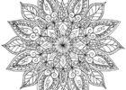 Миниатюра к статье Мандала для раскрашивания и обозначение каждой мандалы