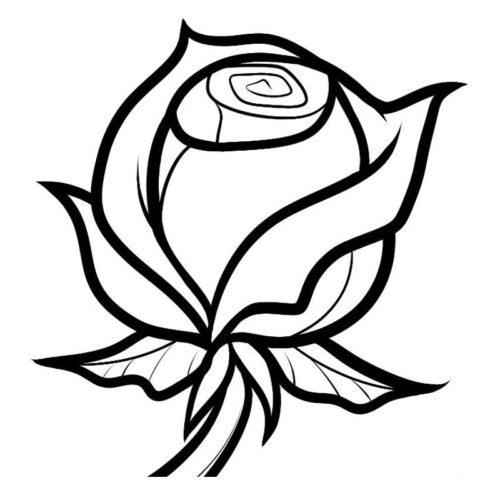 Миниатюра к статье Как рисовать розу — семь простых шагов