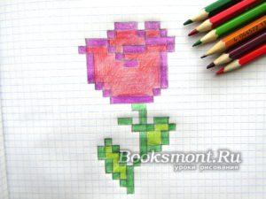 Миниатюра к статье Как нарисовать розу по клеточкам